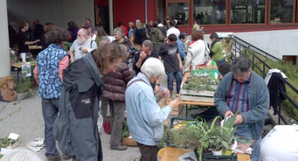Favoriser l'échange, le troc et le don autour des plantes