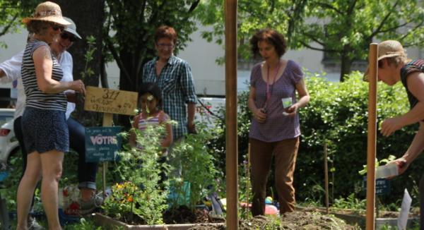 Se réapproprier son territoire en y cultivant des légumes en collectif