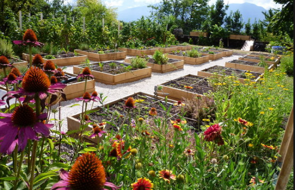 Sensibiliser à l'agriculture biologique